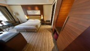 Executive Suite-Bedroom/Living