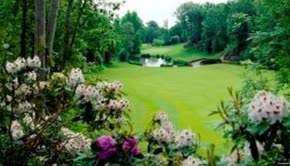 Druids Glen Hotel and Golf Resort