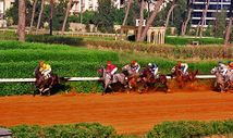 Beirut Horse Racing