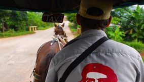Carriage taxi with horse