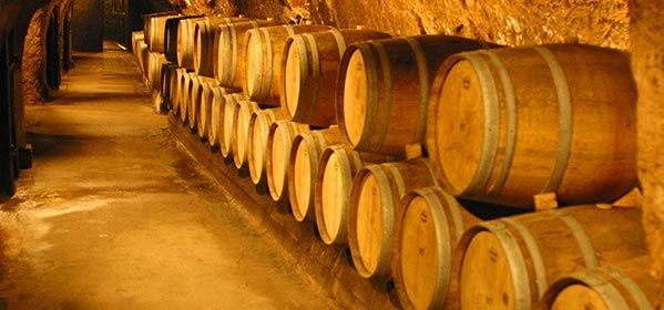 Caves de Ksara Winery Tour
