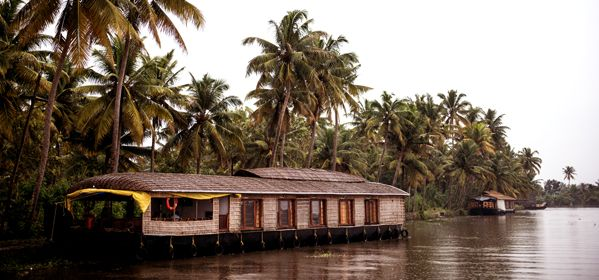 Cochin Backwater Day Tours