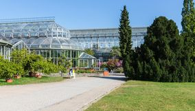 Dahlem Botanical Garden and Museum