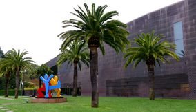 Musee De Young