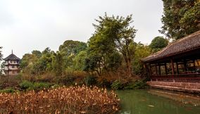 Du Fu Thatched Cottage