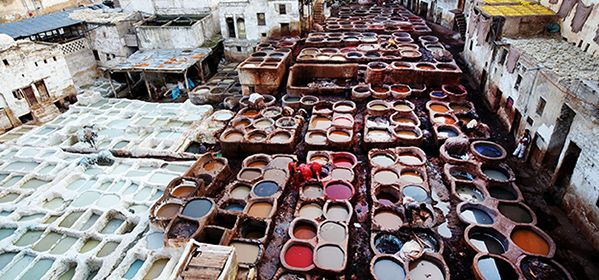 Fes Souks and Tanneries