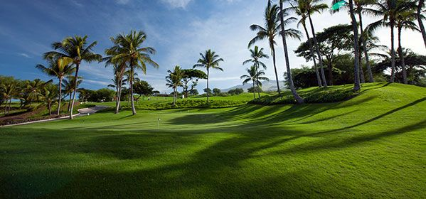 King Kamehameha Golf Course Club