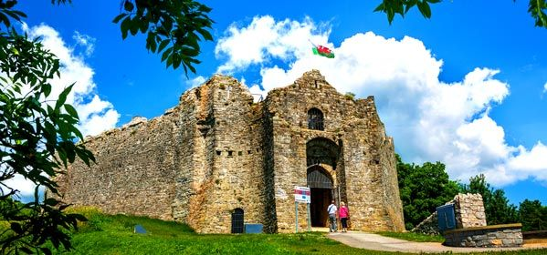 Chateau de Oystermouth