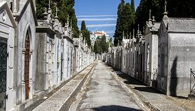 Prazeres Cemetery and Museum