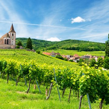 Things to do in Alsace