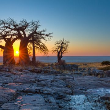 Things to do in Botswana