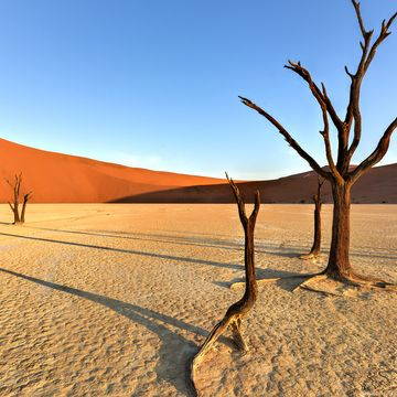Things to do in Namib Desert