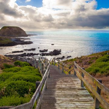 Things to do in Phillip Island