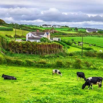 Things to do in Antrim