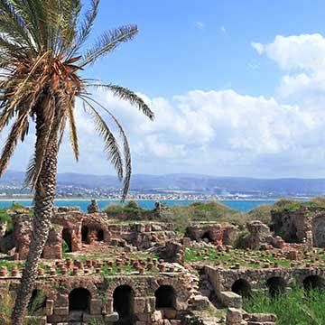 Things to do in Tyre