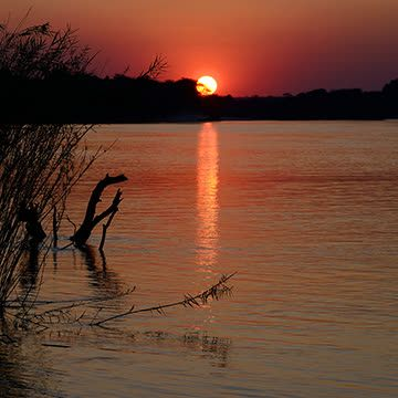 Things to do in Zambezi