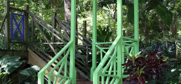 Things to do in Ocho Rios -  Coyaba River Garden and Museum