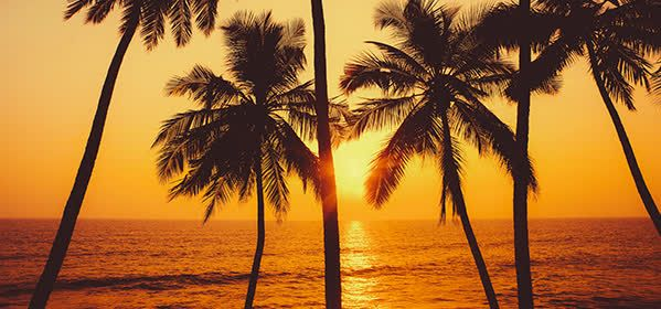 Things to do in Goa - Admiring the Sunset