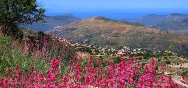Things to do in El Chouf - Ain Zhalta