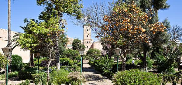 Things to do in Rabat - Andalusian Gardens