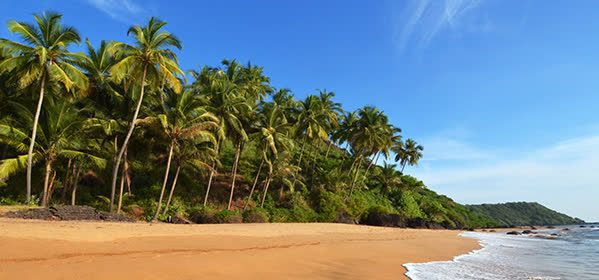Things to do in Goa - Bambolim Beach