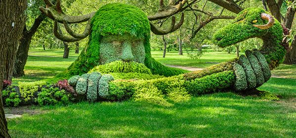 Things to do in Montreal - Botanical Garden