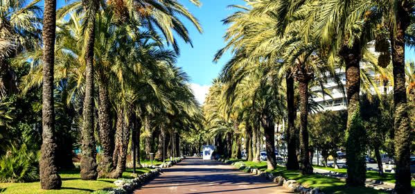 Things to do in Cannes - Boulevard du Midi