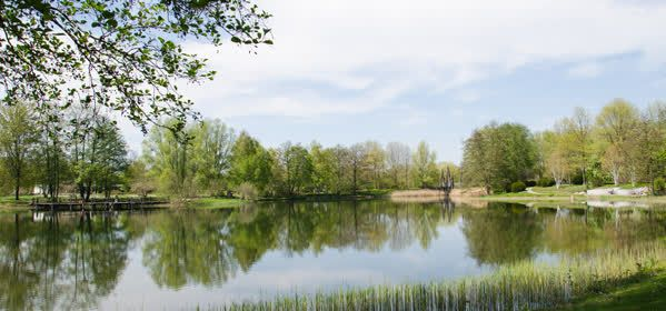 Things to do in Berlin - Britzer Garden