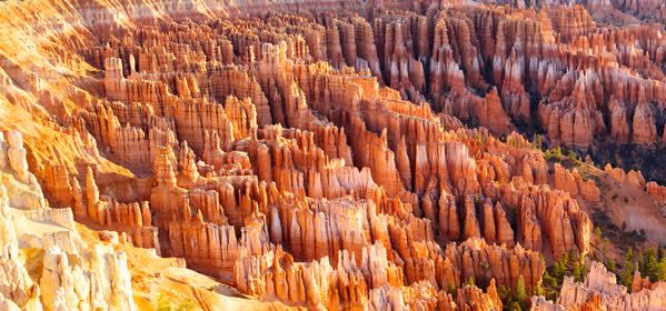 Things to do in Bryce Canyon National Park - Bryce Canyon National Park Sunrise Point