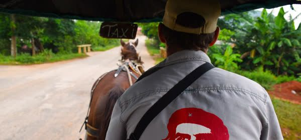 Things to do in Viñales - Carriage taxi  with horse