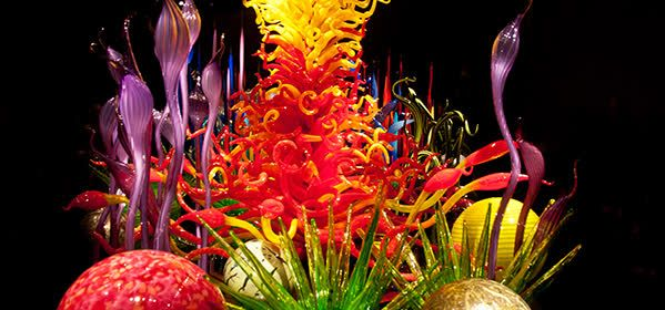 Things to do in Tampa - Chihuly Collection