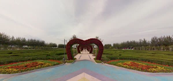 Things to do in Ningxia - China Flower Expo Park