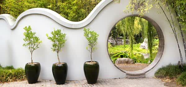 Things to do in Sydney - Chinese Garden of Friendship