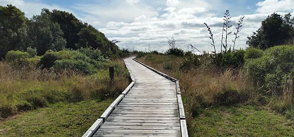 Things to do in New Plymouth - Coastal Walkway