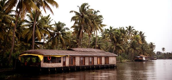Things to do in Kochi - Cochin Backwater Day Tours