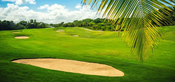 Things to do in Punta Cana - Cocotal Golf