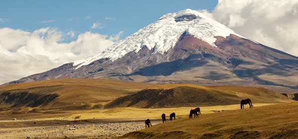 Things to do in Cotopaxi - Cotopaxi National Park