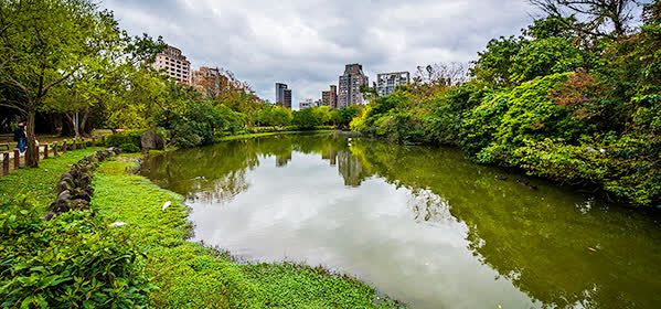Things to do in Taipei - Daan Forest Park