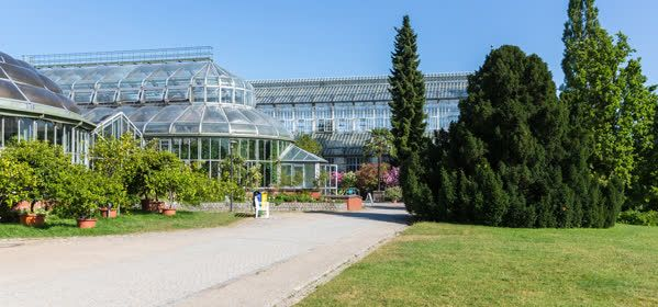 Things to do in Berlin - Dahlem Botanical Garden and Museum