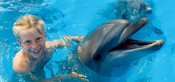 Things to do in Orlando - Discovery Cove