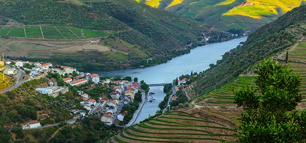 Things to do in Porto - Douro Valley