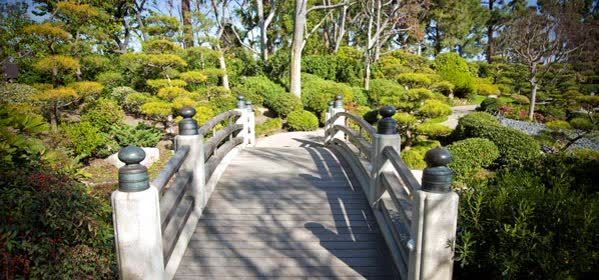 Things to do in Long Beach - Earl Burn Miller Japanese Garden