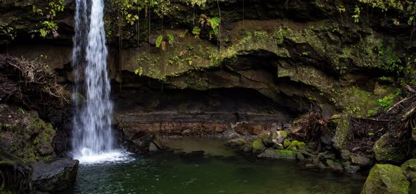 Things to do in Morne Trois Pitons National Park - Emerald Pool