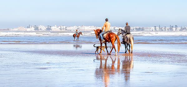 Things to do in Essaouira - Essaouira beach