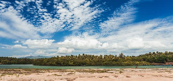Things to do in Goa - Galgibaga Beach