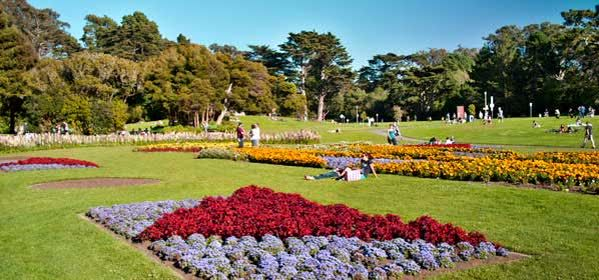 Things to do in San Francisco - Golden Gate Park