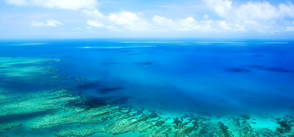 Things to do in Cairns - Great Barrier Reef