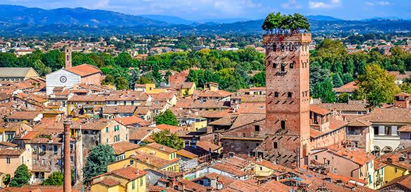 Things to do in Lucca - Guinigi Tower