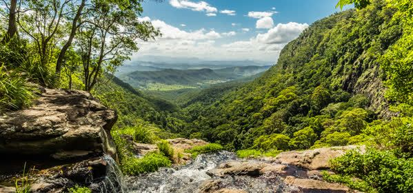 Things to do in Gold Coast - Lamington National Park
