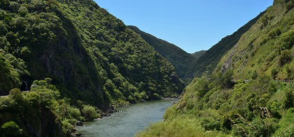 Things to do in Palmerston North - Manawatu Gorge